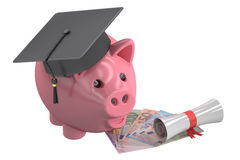 Education Fund with Piggy Bank, 3D rendering Stock Photo