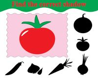 Education. Game for kids. Find the correct shadow of tomato. Vector illustration Royalty Free Stock Photos