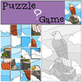 Education games for kids. Puzzle. Cute bald eagle sits on the rock. Education games for kids. Puzzle. Cute bald eagle sits on the top of the rock and smiles Royalty Free Stock Photos