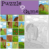 Education games for kids. Puzzle. Mother horse with foal. Education games for kids. Puzzle. Mother horse with her little cute foal Stock Photo