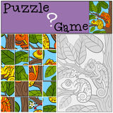 Education games for kids. Puzzle. Two little cute chameleons. Education games for kids. Puzzle. Two little cute chameleons sits on the tree branch Stock Images