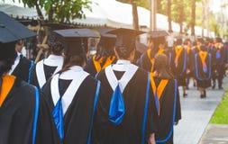 Education graduation in university theme concept. Education background royalty free stock photos