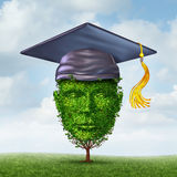 Education Growth. Concept as a graduation cap or mortar board on a tree shaped as a human head as a symbol of growing career potential through skill learning or Royalty Free Stock Photography