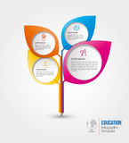 Education info graphic Template Design Stock Image