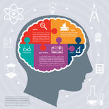 Education infographics concept Royalty Free Stock Photo