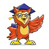 Owl mascot character wearing glasses and graduation cap holding book, Education mascot royalty free stock photos