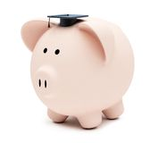 Education piggybank Royalty Free Stock Photos