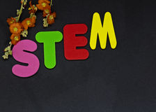 Education represented with letters STEM, Science Technology Engi. STEM area of education represented by letters STEM shown with flowers to highlight importance