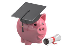 Education Savings Fund with Piggy Bank, 3D rendering Royalty Free Stock Photo