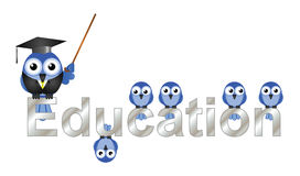 Education text Stock Photography
