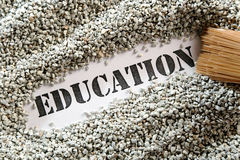 Education -- treasure word series Royalty Free Stock Image