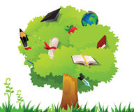 Education tree Stock Images