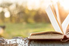Education and wisdom concept - open book under sunlight. Outdoors Stock Photography