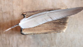 Education word,  feather and old book stock footage