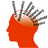 Education Words in Man's Brain Royalty Free Stock Photo