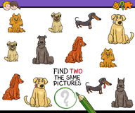 Educational activity for children. Cartoon Illustration of Find Two Exactly the Same Pictures Educational Activity for Children with Purebred Dogs Stock Photography
