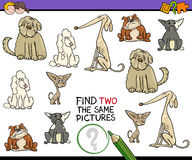 Educational activity for kids. Cartoon Illustration of Find Two Exactly the Same Pictures Educational Activity for Children with Dogs Royalty Free Stock Images