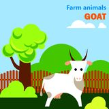 Educational flashcard with goat on the farm Stock Photo