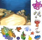 Educational game: assembling Ecosystem of coral reef from ready-made components in form of stickers. Educational game. Assembling Ecosystem of coral reef from stock illustration