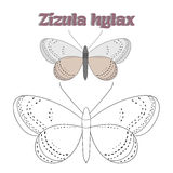 Educational game coloring book  butterfly vector Stock Photo