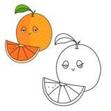 Educational game coloring book orange fruit vector Stock Image