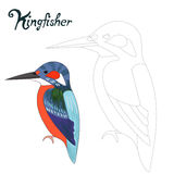 Educational game connect dots draw kingfisher bird Royalty Free Stock Image