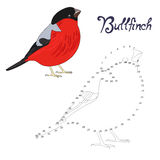 Educational game connect the dots to draw bird Stock Photography