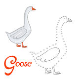Educational game connect dots to draw goose bird Stock Photos