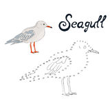 Educational game connect dots to draw seagull bird Stock Photography