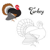 Educational game connect dots to draw turkey bird Stock Photo