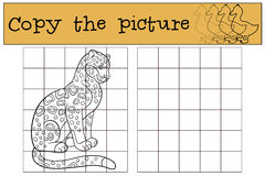 Educational game: Copy the picture. Cute spotted jaguar smiles. Stock Photo