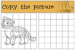 Educational game: Copy the picture. Little cute baby jaguar. Royalty Free Stock Photography