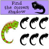 Educational game: Find the correct shadow. Cute green iguana. Educational game: Find the correct shadow. Cute green iguana sits and smiles Royalty Free Stock Image