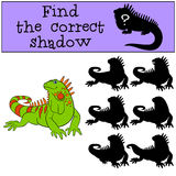 Educational game: Find the correct shadow. Cute green iguana. Educational game: Find the correct shadow. Cute green iguana sits and smiles Royalty Free Stock Photography