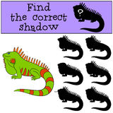 Educational game: Find the correct shadow. Cute green iguana. Educational game: Find the correct shadow. Cute green iguana sits and smiles Stock Photos