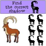 Educational game: Find the correct shadow. Cute ibex smiles. Educational game: Find the correct shadow. Cute ibex stands and smiles Stock Photo