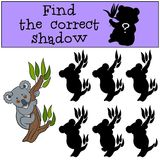 Educational game: Find the correct shadow. Little cute baby koal. A sits on the tree branch and smiles Stock Photography