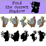Educational game: Find the correct shadow. Little cute koala. Educational game: Find the correct shadow. Little cute koala smiles Royalty Free Stock Photo