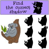 Educational game: Find the correct shadow. Mother koala with bab. Educational game: Find the correct shadow. Mother koala sits on the tree branch with her little Stock Image