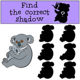 Educational game: Find the correct shadow. Mother koala with bab. Educational game: Find the correct shadow. Mother koala sits with her little cute baby and Stock Photography