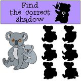 Educational game: Find the correct shadow. Mother koala with bab. Educational game: Find the correct shadow. Mother koala sits with her little cute baby and Stock Photos