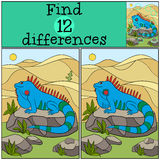 Educational game: Find differences. Cute iguana sits on the rock. And smiles Royalty Free Stock Images
