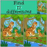 Educational game: Find differences. Mother jaguar with her cub. Stock Photography