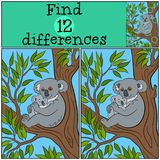Educational game: Find differences. Mother koala with her cute b. Educational game: Find differences. Mother koala sits on the tree branch with her little cute Royalty Free Stock Photos