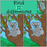 Educational game: Find differences. Mother koala with her cute b. Educational game: Find differences. Mother koala sits on the tree branch with her little cute Stock Image