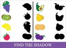 Educational game for kids. Find the correct shadow. Fruits and berries. Vector illustration Royalty Free Stock Photography