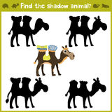 Educational games for children, cartoon for children of preschool age. Find the right shade for African camel. Vector Royalty Free Stock Images