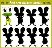 Educational games for children, cartoon for children of preschool age.. Find the right shade for swamp frog. Vector illustration Royalty Free Stock Images