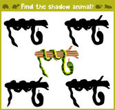 Educational games for children, cartoon for children of preschool age.. Find the right shade for wild Amazonian snakes. Vector illustration Royalty Free Stock Photos