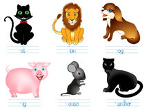 Educational games for children English. Look and name, write the letters. Stock Photos